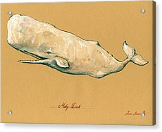 Moby Dick The White Sperm Whale  Acrylic Print