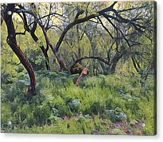 Morning Walk Trees Acrylic Print