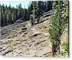 Acrylic Print featuring the photograph Mount Baldy Trail by Juls Adams