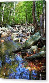 Acrylic Print featuring the photograph Peace by Mitch Cat