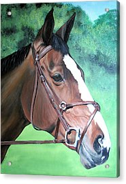 Pet Portrait Painting Commission Dogs Cats Horses  Acrylic Print by Sharon  Lamb