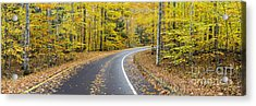 Pierce Stocking Drive In Fall Acrylic Print