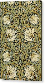 Pimpernel Acrylic Print by William Morris
