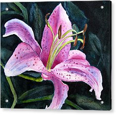 Pretty In Pink Acrylic Print by Pat Vickers