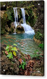 Price Falls In Autumn Color.  Acrylic Print