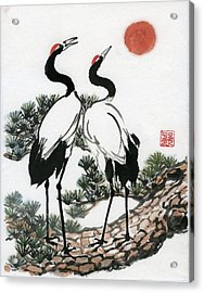 Red Crowned Crane Acrylic Print