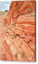 Acrylic Print featuring the photograph Sandstone Wall In Valley Of Fire by Ray Mathis