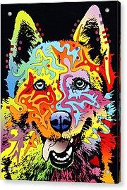 Siberian Husky Acrylic Print by Dean Russo