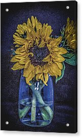 Sunflower Acrylic Print by Angela Aird