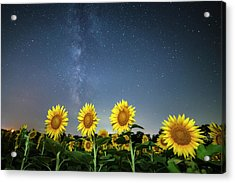 Sunflower Galaxy Iv Acrylic Print