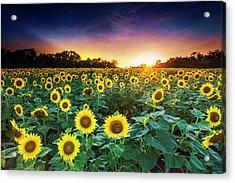 3 Suns Acrylic Print