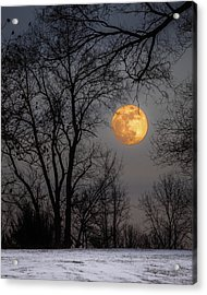 Super Blue Moon Rising Acrylic Print
