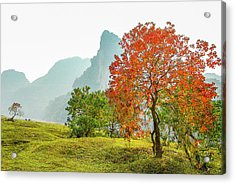 The Colorful Autumn Scenery Acrylic Print