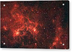 The Dragon Fish Nebula Acrylic Print by American School