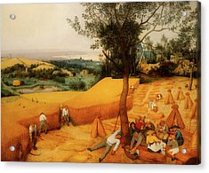 Acrylic Print featuring the painting The Harvesters by Pieter Bruegel The Elder