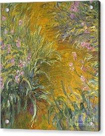 The Path Through The Irises Acrylic Print by Claude Monet