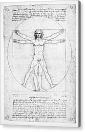 The Proportions Of The Human Figure Acrylic Print by Leonardo Da Vinci