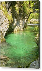 The Vintgar Gorge Acrylic Print by Ian Middleton