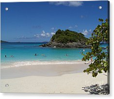 Acrylic Print featuring the photograph Trunk Bay by Carol  Bradley