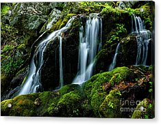 Wigwam Falls Acrylic Print by Thomas R Fletcher