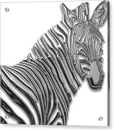 Zebra Collection Acrylic Print by Marvin Blaine
