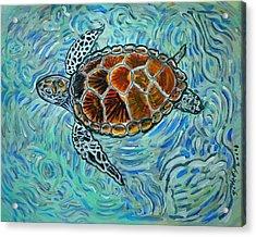 Sea Turtle Print Acrylic Print by W Gilroy