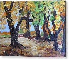 #35 Cottonwood Colors Acrylic Print