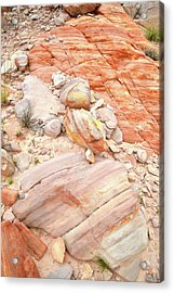 Acrylic Print featuring the photograph Multicolored Sandstone In Valley Of Fire by Ray Mathis