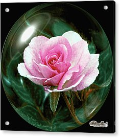 Acrylic Print featuring the photograph 3d Pink Rose Sphere by William Havle