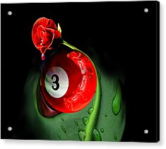 3rd Rose Acrylic Print by Draw Shots