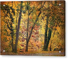 Autumn Canvas Acrylic Print by Jessica Jenney