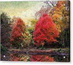 Autumn Reflected Acrylic Print by Jessica Jenney
