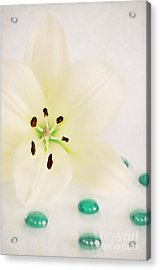 Beauty Acrylic Print by Angela Doelling AD DESIGN Photo and PhotoArt