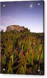 Cabo Raso Acrylic Print by Andre Goncalves