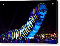 Coachella Music Festival 2015 Acrylic Print