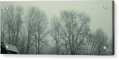 Dead Of Winter Acrylic Print by JAMART Photography