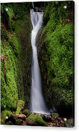 Acrylic Print featuring the photograph Dollar Glen In Clackmannanshire by Jeremy Lavender Photography