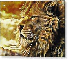 Lion Acrylic Print by Marvin Blaine