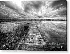 Loon Lake Acrylic Print