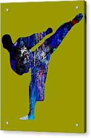 Martial Arts Collection Acrylic Print by Marvin Blaine