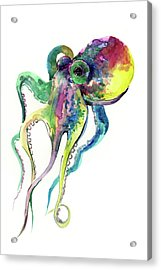 Octopus Acrylic Print by Suren Nersisyan
