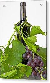 Red Wine Acrylic Print by Joana Kruse