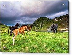 Rila Mountain Acrylic Print by Evgeni Dinev