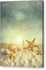 Starfish And Seashells  At The Beach Acrylic Print