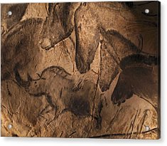 Stone-age Cave Paintings, Chauvet, France Acrylic Print