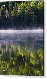 Summer Morning Acrylic Print