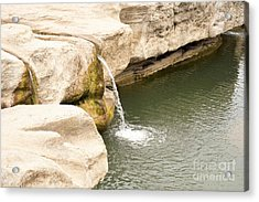 Acrylic Print featuring the photograph Texas - Mckinney Falls State Park  by Ray Shrewsberry