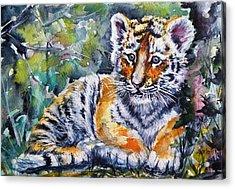 Acrylic Print featuring the painting Tiger Cub by Kovacs Anna Brigitta