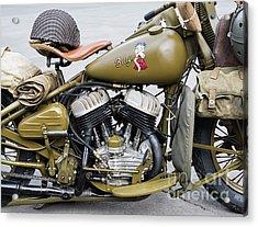 42wlc Harley Acrylic Print by Tim Gainey