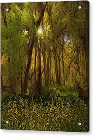 Acrylic Print featuring the photograph 4368 by Peter Holme III